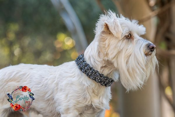 black & white macrame dog collar