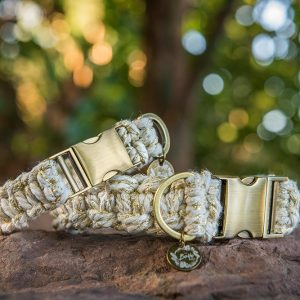 Golden sands macrame dog collar